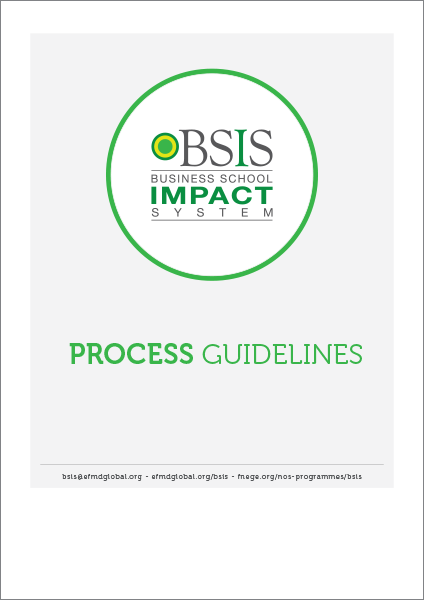 BSIS-Process_guidelines
