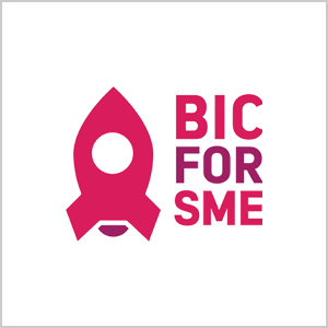 EFMD_Global-Projects_bic4sme_square